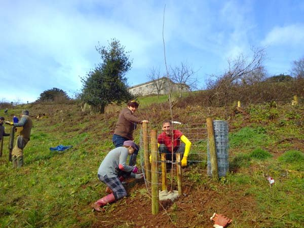 Tree Care Day at The Sharpham Trust 02.jpg