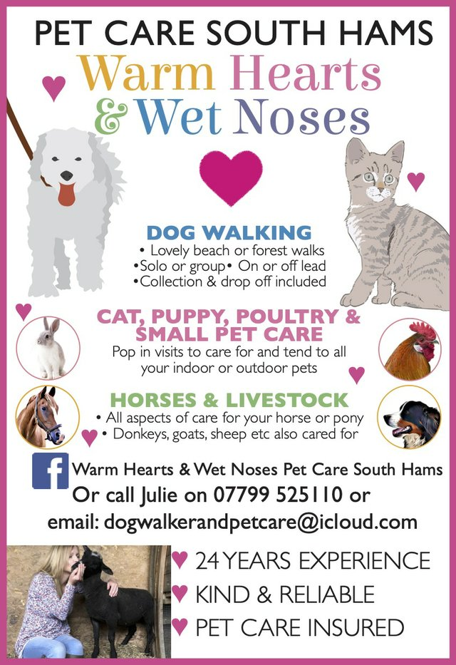 Pet Care South Hams Advert March 2021 March 21.jpg