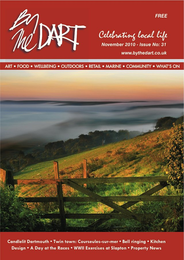 November 2010 The Dart Front Cover