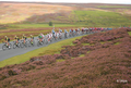 tour of britain 2021 cycling