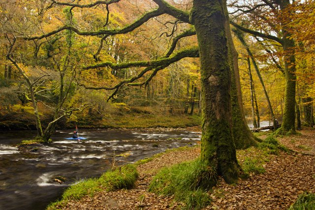 The River Dart - A Journey: part 2