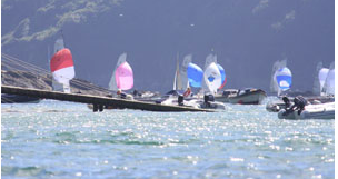 Salcombe Regatta