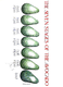 The Seven Stages of the Avocado