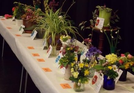 Dartmouth and Kingswear Horticultural Society