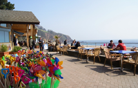 Venus Cafe - Blackpool Sands