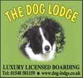 The Dog Lodge