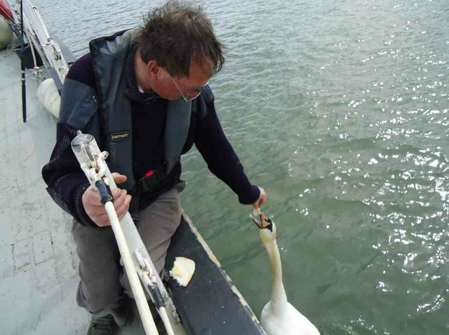life aboard march 2015