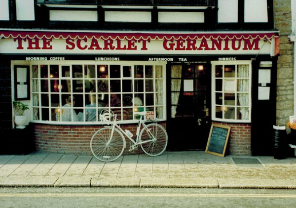 The Scarlet Geranium, Dartmouth