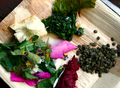 Forage & Feast - Wild Food Finding, 20 March, 15 May, 17 July