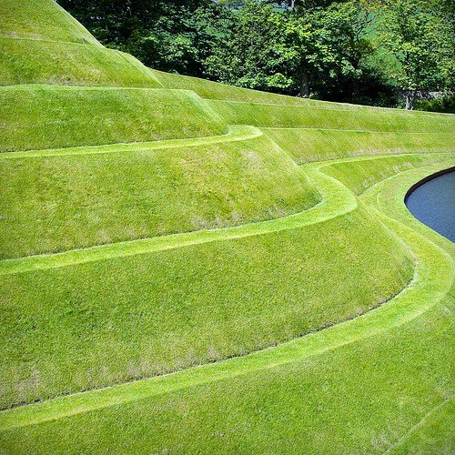 Lawn as Sculpture